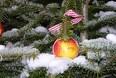 Glæd fuglene med juletræet