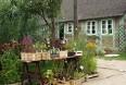 Stort plantemarked i Nordtyskland