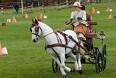 Klar til hestekørsel