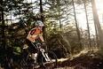 Uenighed om mountainbikes i skovene