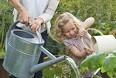 Havebassinet kan koste tusindvis af kroner
