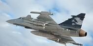 Kampfly dræber tusinder af minkhvalpe
