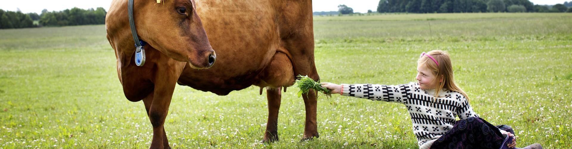 Åbent landbrug over hele landet