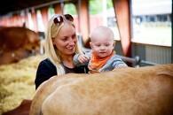 Københavnerne får smagsprøve på dyrskue