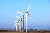Stor spænding om vindmølle-undersøgelse