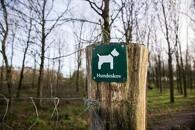 Nye hundeskove skyder op over hele landet
