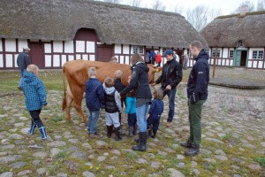 Dyrenes Dag på Glud Museum