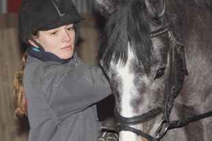 Fokus på hestens trivsel