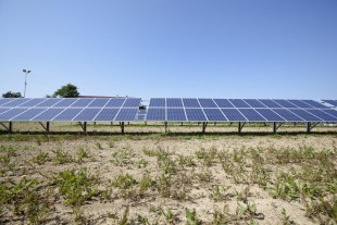 Stop for støtte til solceller