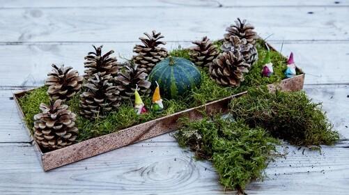 Guide: Genbrug julen i haven