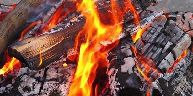 Køb brænde til skovturen over mobilen