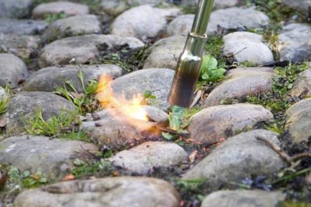 Ukrudtsbrændere har været brugt i mange år, men kogende vand og damp kan også bruges.