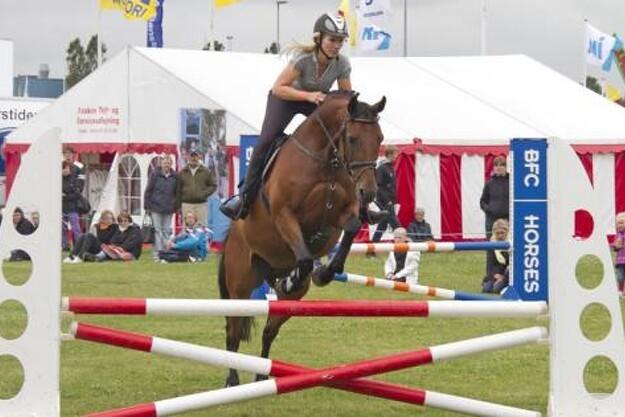 Hest for Alle på Landsskuet i Herning er en af landets allerstørste hestebegivenheder med et væld af konkurrencer, opvisninger og aktiviteter.