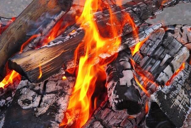 Brænde-boksen ved Stenderup bliver ikke brugt så meget, som initiativtagerne havde håbet på. Her kan man ellers med en mobiltelefon købe brænde til skovturen.