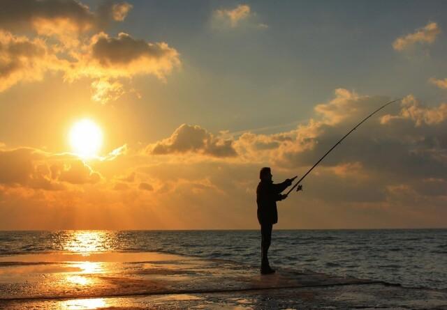 Danmarks får strategi for lystfiskeri