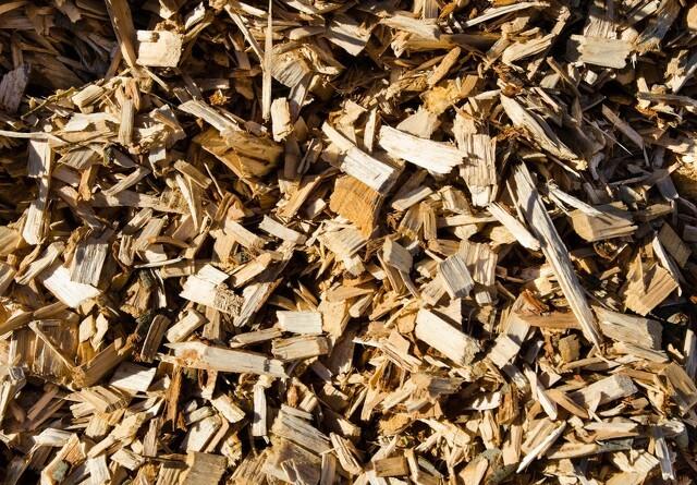 Skovdyrkere anerkendes for bæredygtig flis