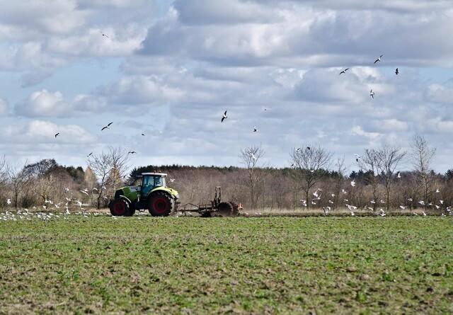 Millioner til grønt landbrug