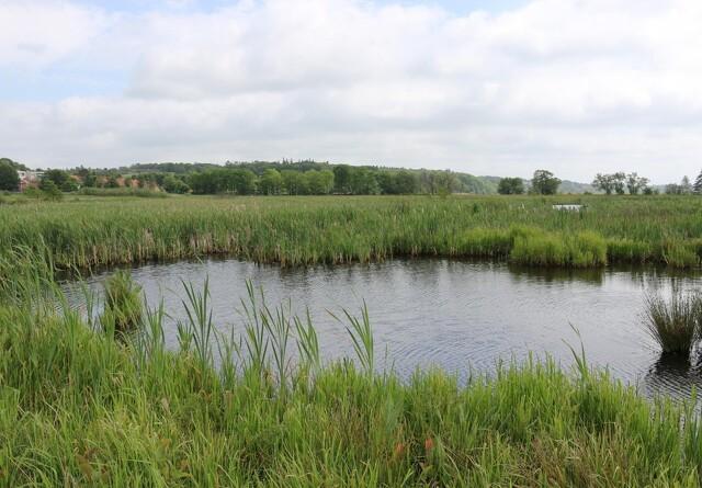 Mange landmænd vil have minivådområder