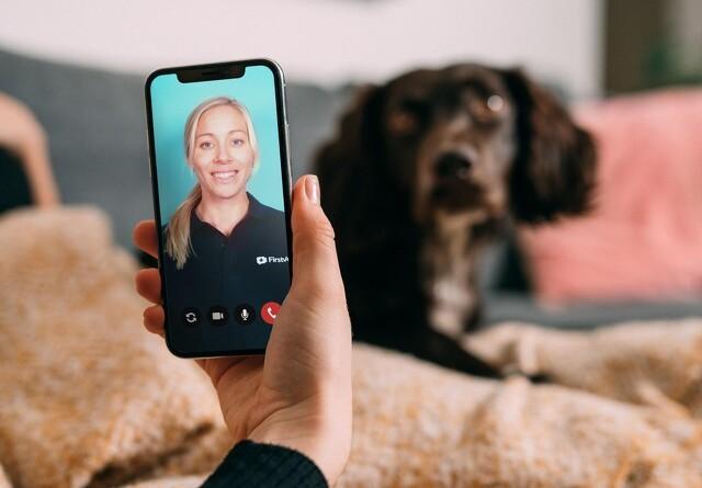 Med hunden til dyrlæge - hjemmefra