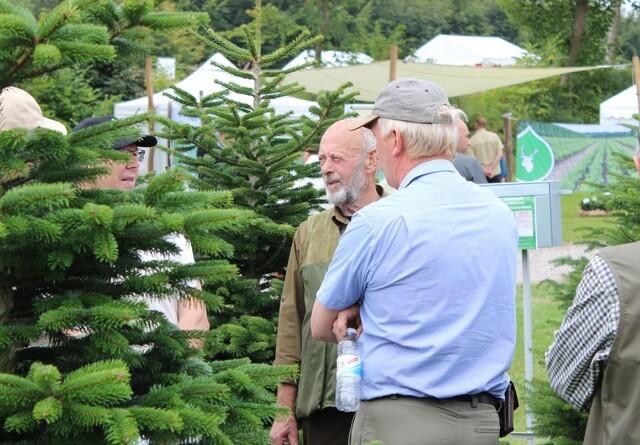 Juletræsmesse vil samle hele skovbranchen