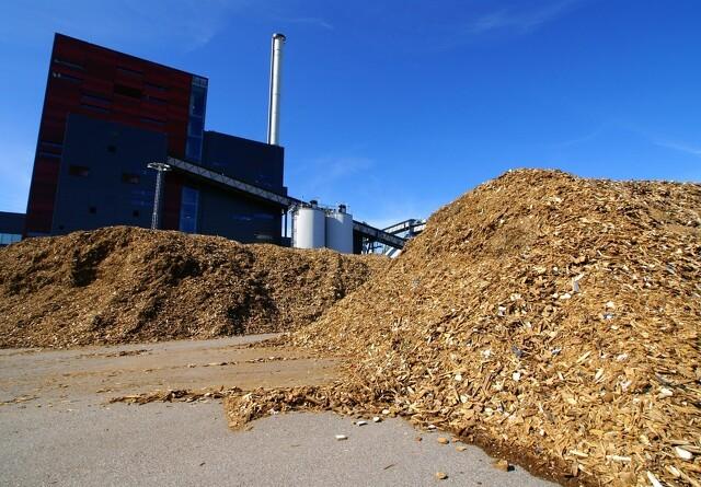 Energibranchen vil have bæredygtig biomasse