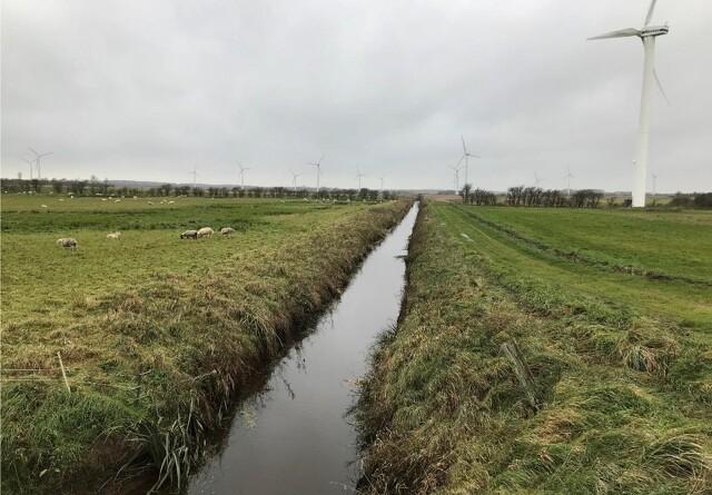 Sønderjysk naturprojekt skal reducere C02