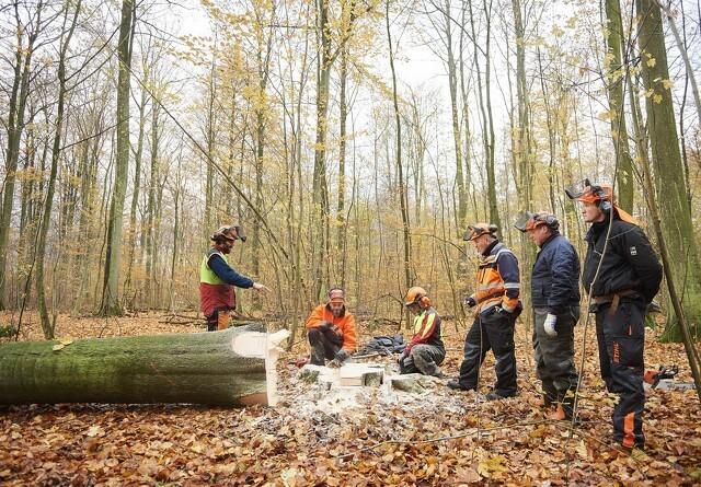 Pres på skovskolen for flere praktikpladser