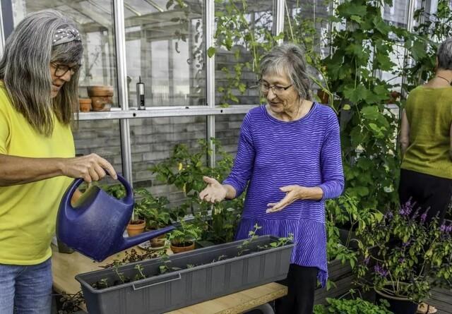 Antallet af seniorbofællesskaber stiger markant
