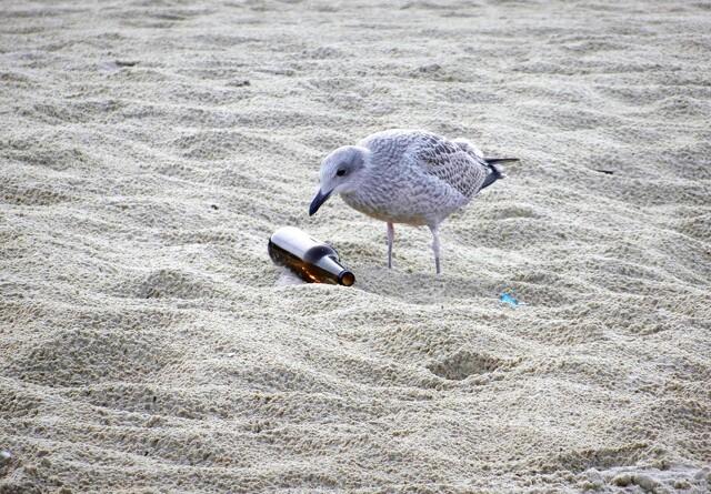 Stranden er ikke en skraldespand