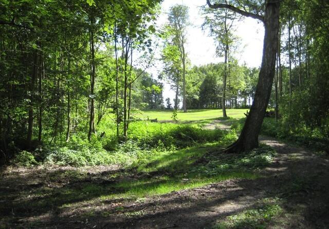 Samarbejde vil omdanne områder med lav naturværdi til sunde skove