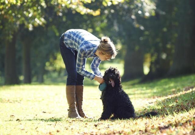 Ny lov skal tvinge hundejere til at gå lange ture med hunden