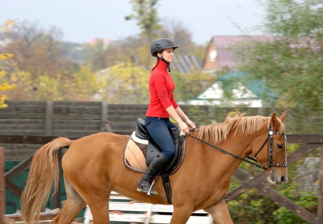 En sur hest i stalden er også sur under rytter