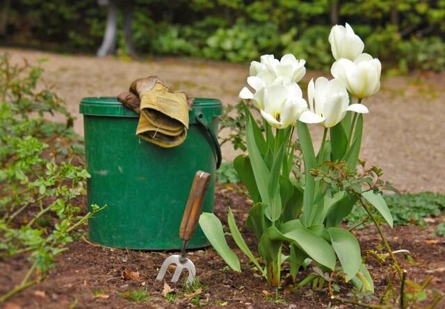Haven i april: Det kan du gøre nu