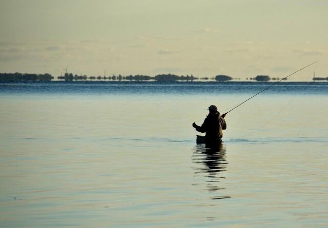 Boom i lystfiskeri