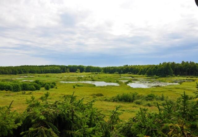 Tre nye naturnationalparker på vej