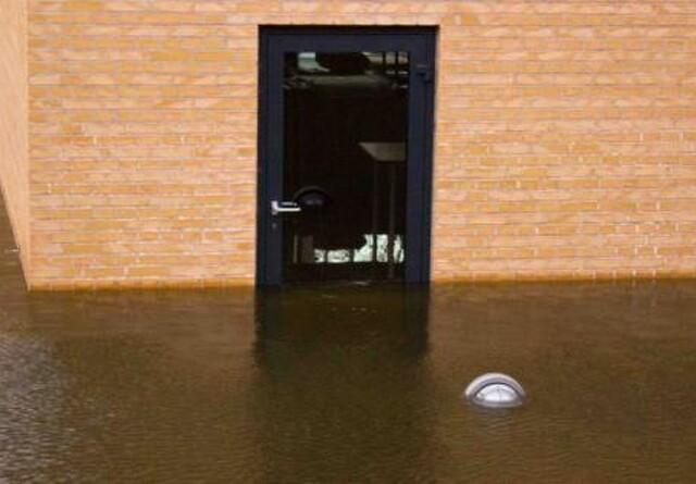Risiko for skimmelsvamp efter oversvømmelser