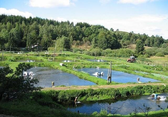 Flere dambrug lukkes for at forbedre vandkvaliteten