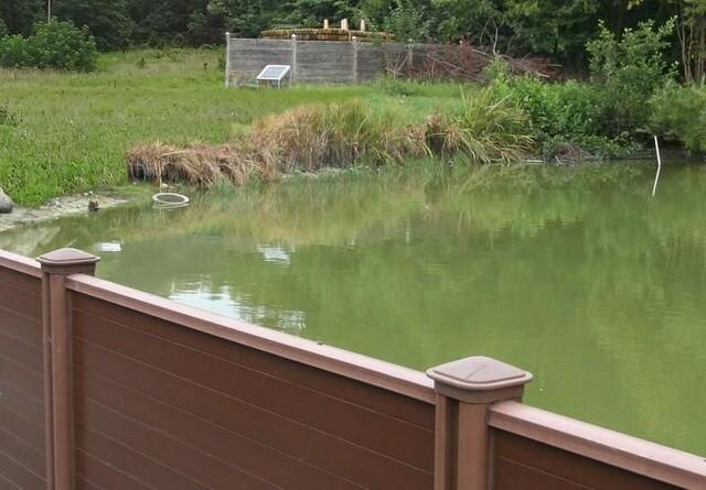 Hegn mod oversvømmelser