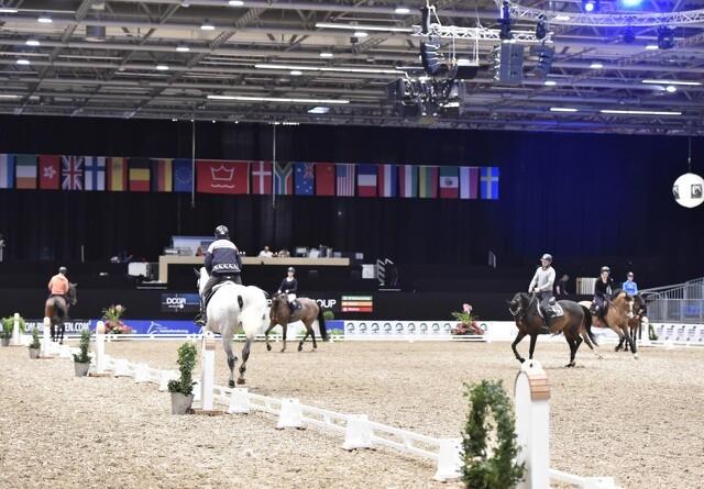 Hestevrinsk og hovslag i Boxen