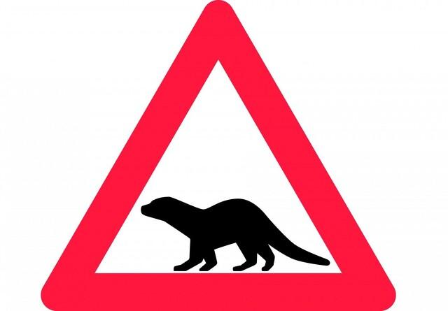 Nyt advarselsskilt skal give færre trafikdræbte oddere