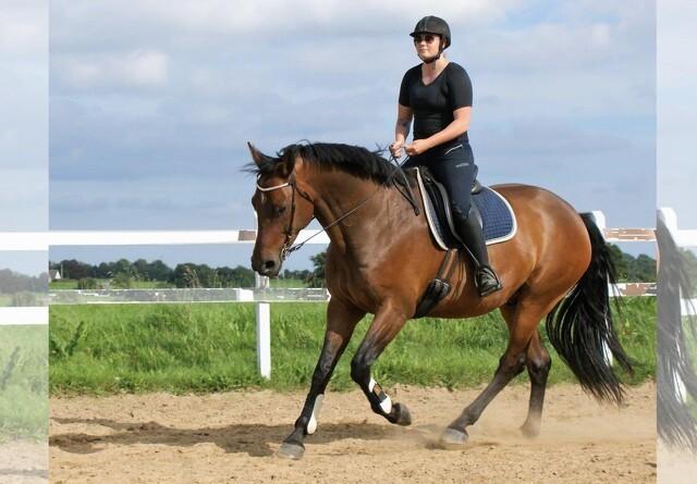 En god holdning hjælper hesten