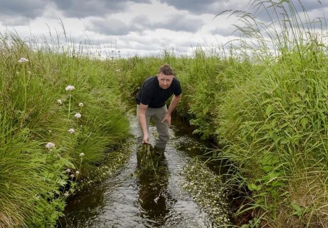 Landmænd ønsker også mere natur