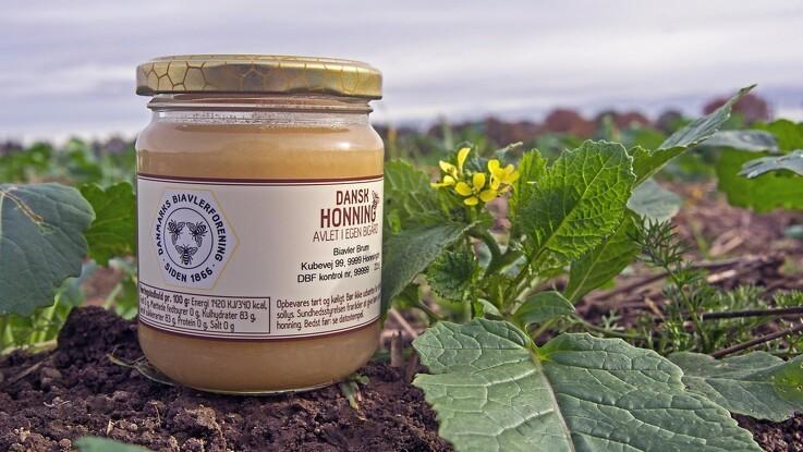 Dansk honning til tops i ny stor test