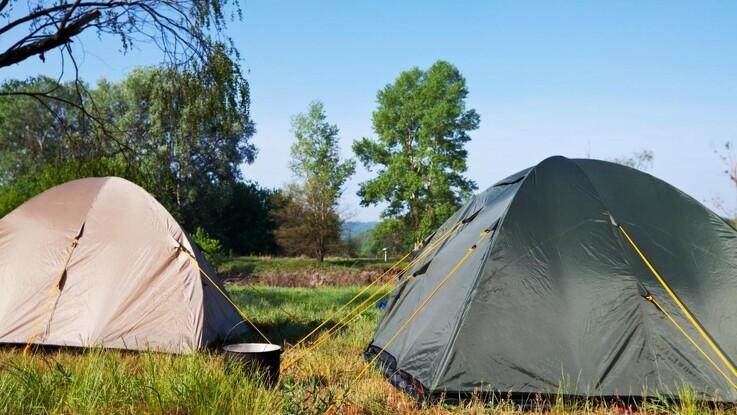 Flere telte i skovene