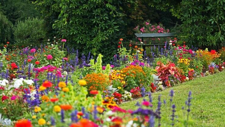 Sådan overlever haven din ferie