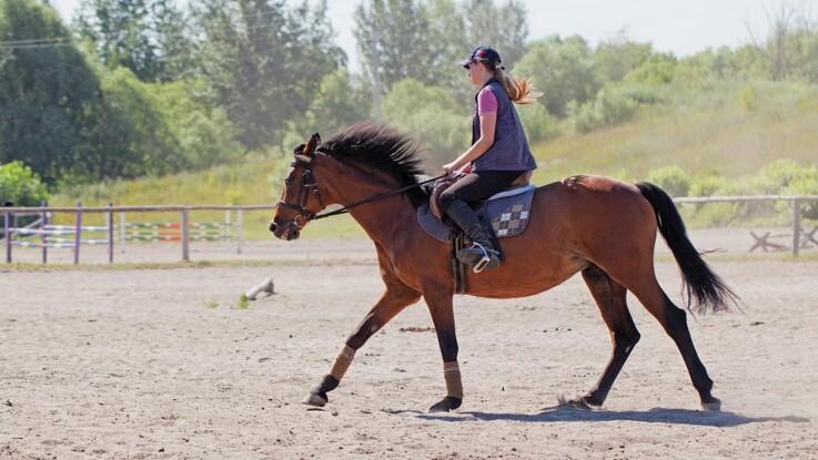 Sådan undgår du rygproblemer hos hesten