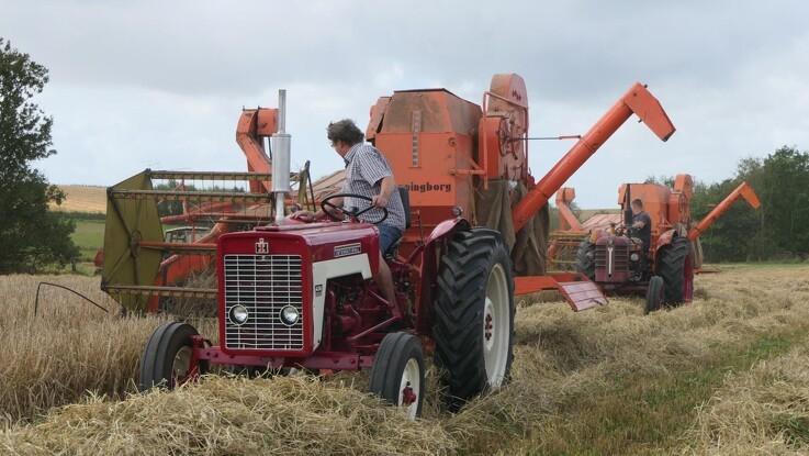 20 veteraner på hårdt høstarbejde