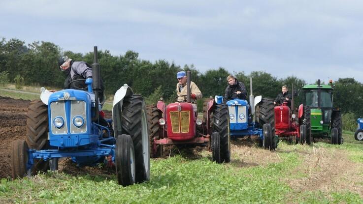 25 veterantraktorer om 10 hektar pløjning