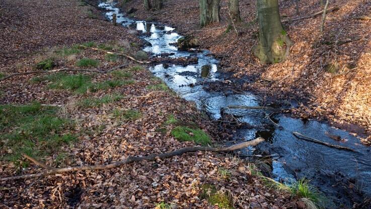 Mere fart i indsatsen med at forbedre vandløb