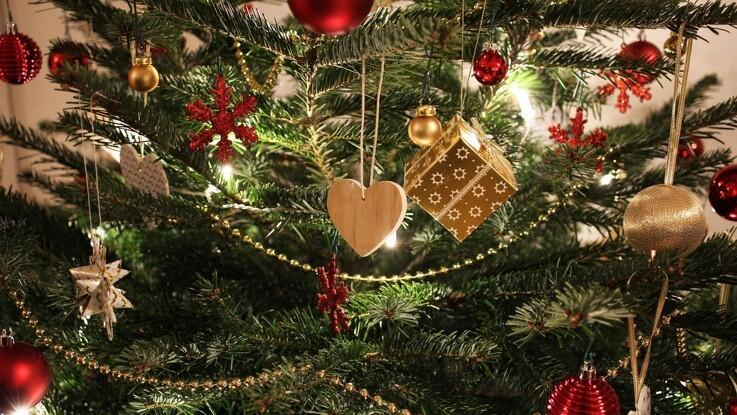 Guide: Hold juletræet friskt hele julen